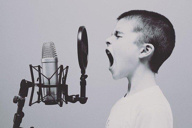zpěv do mikrofonu