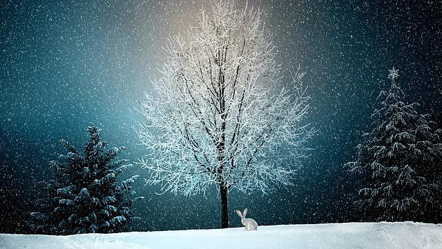 zajíc u stromu