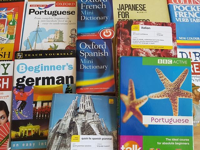 prodej slovníků
